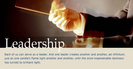 leadership competencies, developing technology leadership, visionary leadership